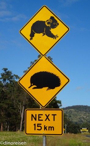Straßenschild Koala & Echidna